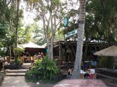 TreeHouse Cafe - 25 Childe St, Byron Bay - Out of main Byron, near Belongil Beach resides Treehouse Pizza. Very relaxed with outdoor tables. Dogs welcome on the outdoor tables.