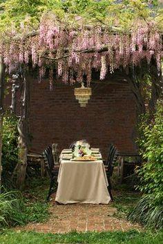 Al fresco under wisteria - definitely heaven scent. Outdoor Rooms, Outdoor Dining, Outdoor Gardens, Dining Area, Fine Dining, Courtyard Gardens, Dining Room, Wisteria Arbor, Wisteria Garden