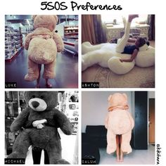 """""""5SOS Preferences: The Giant Teddy Bear He Gets You"""" - Ashtons because that bear looks bigger than the others!"""