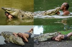 Deep in the Costa Rican jungle, a fisherman named Chito discovered a crocodile that had been shot in the eye by a cattle farmer and left for dead. Chito was able to drag the massive reptile into his boat and brought him to his home, where he stayed by his side for months, nursing him back to health.