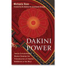 Dakini Power: Twelve Extraordinary Women Shaping the Transmission of Tibetan Buddhism in the West: Michaela Haas: Books: Shambhala Publications When Things Fall Apart, Heart Of Life, Tibetan Buddhism, Books To Read Online, Tantra, Social Science, Rock Climbing, Nepal, The Book
