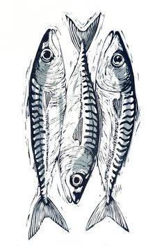 Mackerel - Mackerel -This is a lovely hand cut, signed, original lino print. I found the silvery sheen and int - Fish Drawings, Art Drawings, Art And Illustration, Arte Pop Up, Tableau Pop Art, Fish Artwork, Fish Print, Art Graphique, Graphic Patterns