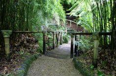 Gardens in Cornwall | Glendurgan | Falmouth