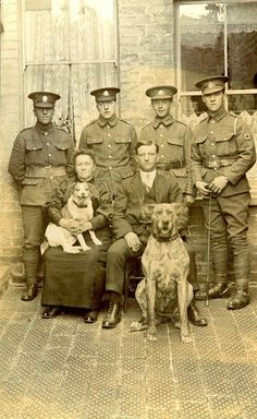 Four soldiers standing behind seated civilians and two dogs, 1st August 1915