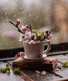 Se piove fuori  Migliora dentro!  Buon sabato!!!pic.twitter.com/CCYc51x1aN