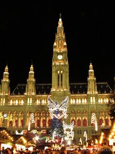 lady in black: Christmas markets #christmasmarkets #christmas #markets #vienna #vieden #vianocnetrhy #vianoce #decorations #winter #oldtown #merrychristmas #christmastree