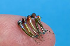 Micro Baetis tied  using Perdigones style - posted in The Fly Tying Bench: here are a few micro baetis tiedfor crystal clear rivers. Where I go for fishing in Lombardia  the fishing pressure is very high ( a lot of fishermen from Milano  and near by are visiting  these parts) so Catch and Release make the fish very spooky and educated. I prefer to fish differently to  catch more than others and for this reason I use micro nymphs and thin  tippets. Beatis start to b...