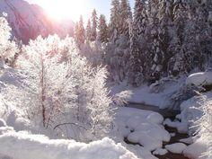 Laufen Sie sprichwörtlich dem Himmel entgegen – auf der Höhenlanglaufloipe in Königsleiten oder genießen Sie beim Winterwandern auf über 2000m die glasklare Bergluft!  Alle Infos:www.gerlos.at