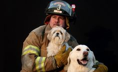 First responders can now treat animals in cases of emergency without having to worry about legal repercussions. Congratulate Ohio on its…