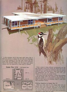 This may be my favourite design for shipping container cottages. Love the covered deck between the three units. Container Buildings, Container Architecture, Architecture Design, Vintage House Plans, D House, Cottage Plan, Shipping Container Homes, Shipping Containers, Mid Century House