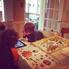 How We Came to Homeschooling Part 3: Calming the Fear and Moving Beyond.