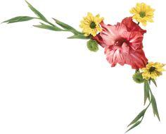 "Photo from album ""Цветочные уголки"" on Yandex. My Flower, Flower Power, Pretty Flowers, Views Album, Yandex, Making Ideas, Card Making, Clip Art, The Originals"