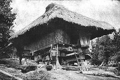 """Ifugao House:   """"""""The Ifugao houses are small but well constructed, standing upon four or more posts, which are sometimes quaintly carved, and are invariably provided with projecting shoulders to prevent rats and other small animals from gaining entrance into the house"""". [Worcester 1912: p. 884] """" Filipino Architecture, Philippine Architecture, Timber Architecture, Vernacular Architecture, Filipino House, Bahay Kubo, Subic, Philippines Culture, Filipino Culture"""