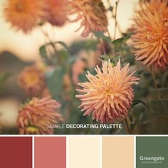 Color Schemes Colour Palettes, Green Color Schemes, Green Colour Palette, Color Palate, Color Combos, Newborn Fotografie, Garden Wall Art, Peach And Green, Gifts For Nature Lovers