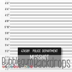 6ft.x6ft. Police Station Mug Shot Professional Vinyl by PeekPrints
