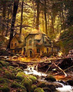 Enchanting little home in the forrest.