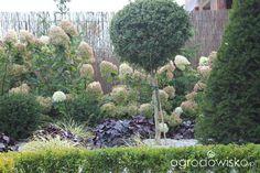 Przedwiośnie ogrodu..:)