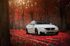 BMW F82