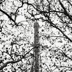 Josef Hoflehner Photographer | Paris, France La Tour Eiffel, Study 10 - Paris, France, 2010