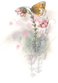 Achtergrond - Marjolein Bastin