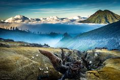 Middle Earth by jerome_fang The beautiful Sunrise that Welcomed me after my climb to the top of Mount Ijen. Breathtaking moment where I'm above the clouds with the Sun reflecting it's glow and the...