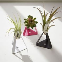 The Sill Planter + A...