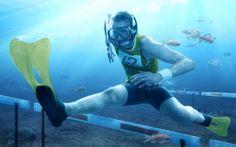 水中、水生、ジャンプ、アスリート、スポーツ、ユーモア