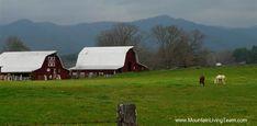 Hayesville NC farm
