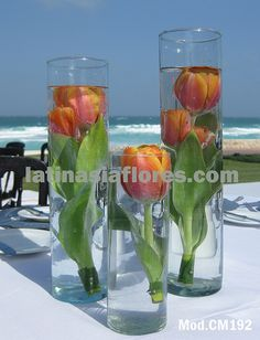 submerged tulips in tall cylinder vases - either in different heights, or one large one Renewal Wedding, Our Wedding, Dream Wedding, Wedding Reception Decorations, Wedding Centerpieces, Centrepieces, Tulip Wedding, Wedding Flowers, Wedding Trends