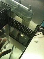 Modifying your Aquaclear - Ok guys I thought I would share how I turned simple Aquaclear filter into a HOB refugium. Diy Aquarium, Aquarium Ideas, Discus, Sump, Freshwater Aquarium, Fresh Water, Fish Tanks, Aquariums, Filters