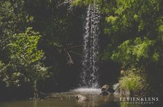 Hot day in Hamilton Gardens {Personal family moments - Hamilton lifestyle photographer}  http://www.levienphotography.com/blog/2016/1/9/hot-day-in-hamilton-gardens-personal-family-moments-hamilton-lifestyle-photographer