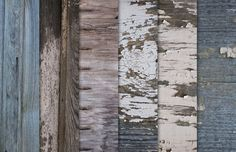Medialoot - Old Weathered Wood Textures