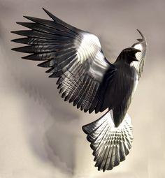 Reverence For Raven Reserved for Annette