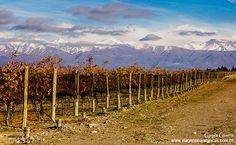 Bodega Andeluna no Vale do Uco – Mendoza, Argentina