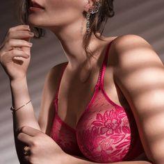 Venez vite découvrir les nombreux articles PRIMADONNA pendant les soldes sur votre boutique de lingerie adorée Mesdessous.fr