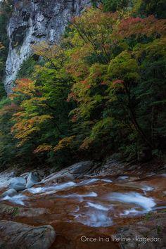 https://flic.kr/p/C9NcHc | 巌 | 水の流れに色付きだした紅葉。その上の岩肌も含めて一番気に入ったポイントかも。