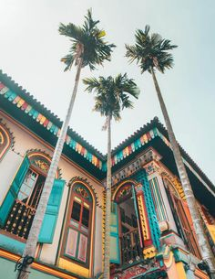 SINGAPORE GUIDE things to do singapore little india & Singapore & Singapore tour guide & Where to stay in Singapore & Singapore holiday & Singapore vacation & Singapore tourist [& Singapore Tourist Spots, Singapore Vacation, Singapore Attractions, Singapore Travel Tips, Singapore Itinerary, Singapore Photos, Visit Singapore, Wanderlust Singapore, Haji Lane Singapore