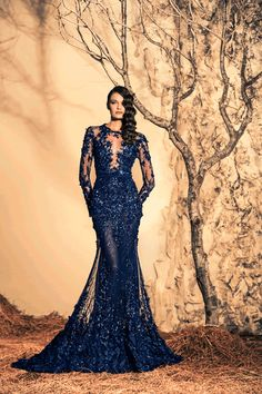 Glamorous Evening Dresses By Ziad Nakad