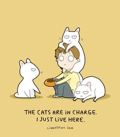 24 Fresh Hilarious Cat Comics By Brilliant Artist Lingvistov - World's largest collection of cat memes and other animals Crazy Cat Lady, Crazy Cats, Funny Cats, Funny Animals, Cute Animals, I Love Cats, Cool Cats, Kitten Baby, Catsu The Cat