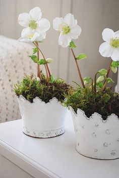 Love the sweetness of these flowers and the adorable pots