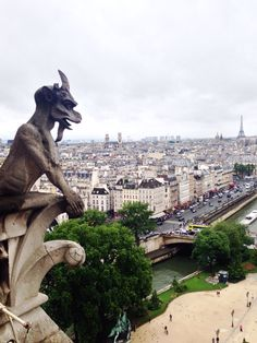View from Notre Dame - Paris