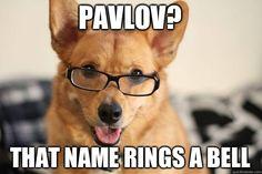 Psychology jokes FTW!