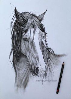 Caroline Collinson ✏✏✏✏✏✏✏✏✏✏✏✏✏✏✏✏ ARTS ET PEINTURES - ARTS AND PAINTINGS ☞ fr.pinterest.com/... ══════════════════════ BIJOUX ☞ www.facebook.com/... ✏✏✏✏✏✏✏✏✏✏✏✏✏✏✏✏