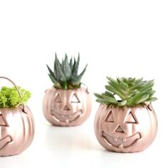 Turn tiny plastic pumpkins into party favors and place cards for you next Halloween get together.