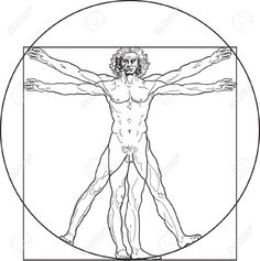 8566117-Homo-vitruviano-So-called-The-Vitruvian-man-a-k-a-Leonardo-s-man-Detailed-drawing-on-the-basis-of-a-Stock-Vector.jpg 1,294×1,300 pixels