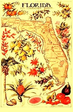 Old Florida Map Poster.  www.EyemarkRealty.com and www.GainesvilleFloridaHomes.com