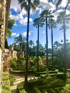 LP Adventures · Let's go on an adventure! South Of Spain, Seville Spain, Tropical Gardens, Royal Garden, Spain And Portugal, Free Travel, Christmas Images, Malaga, Long Weekend