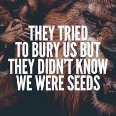 They Tried To Bury Us Quote - Workout Quotes - Fitness Quotes #gym #motivational