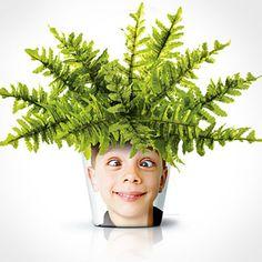 Mieux qu'un cadre photo, voila une idée originale pour personnaliser vos pots de fleurs avec une photo de vos proches… Matériel nécessaire : un pot de fleur une plante (un peu tombante …
