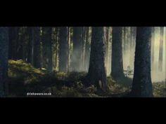▶ Kopparberg! Scandi feel Tv Ads, Feelings, Plants, Painting, Art, Art Background, Tv Adverts, Painting Art, Kunst